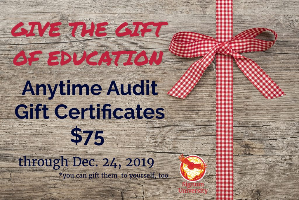 Anytime Audit Gift Certificate Special